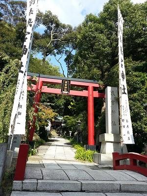 熱海の来宮神社 (2)